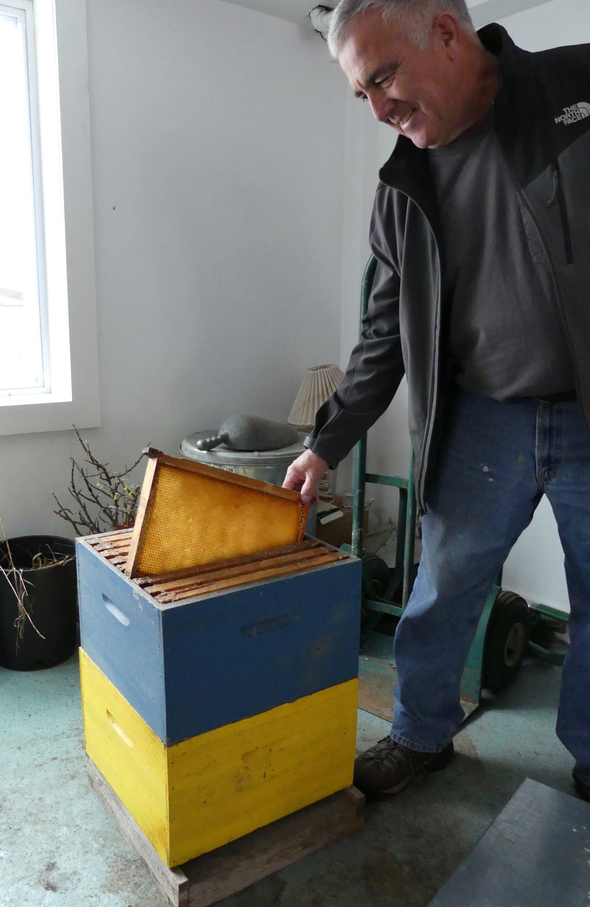 Mailloux2_beekeeping