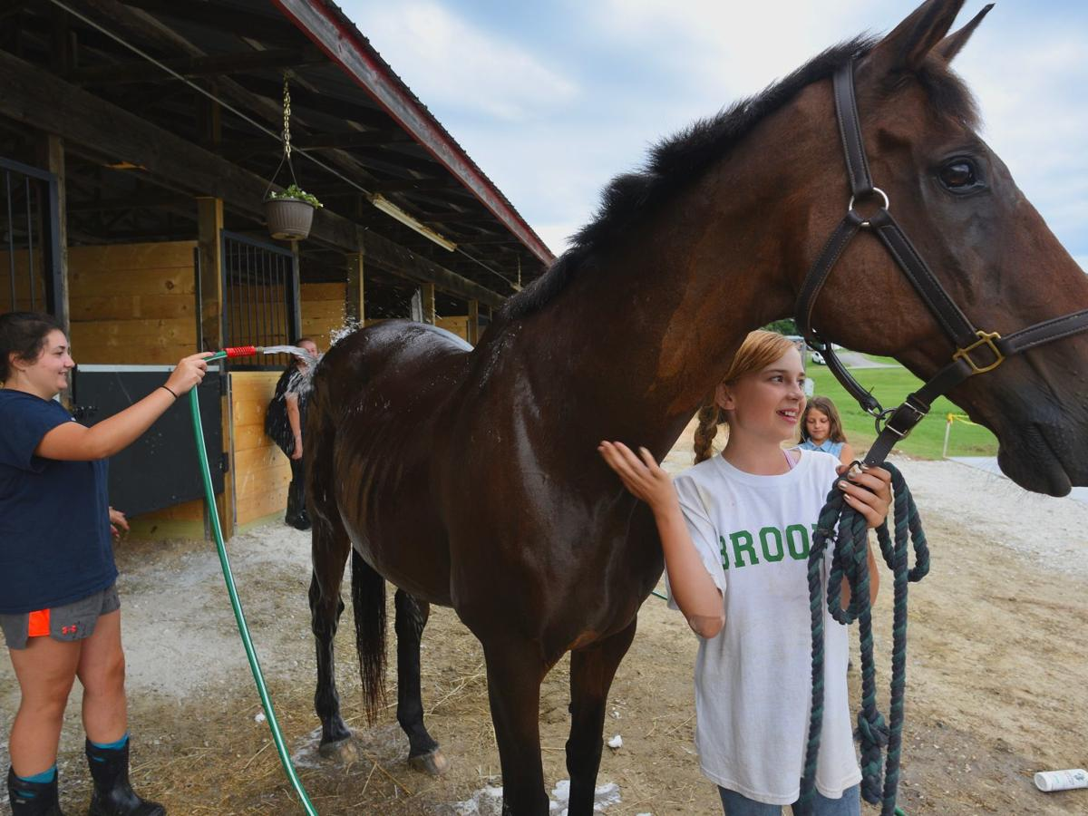 New horse facilities at fair make riding a mane event