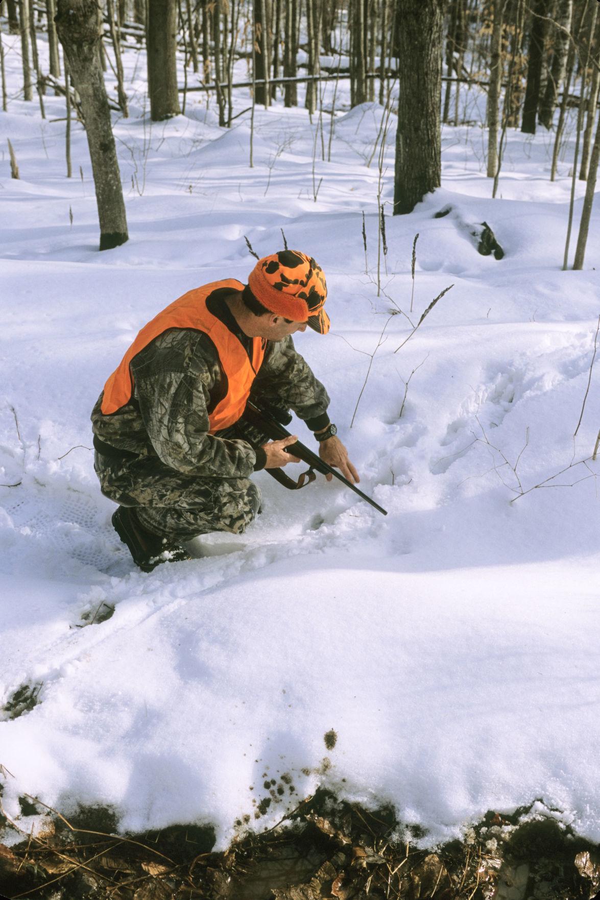 VT deer tracking-.JPG