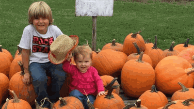 This 6-Year-Old With Diabetes Sold Pumpkins And Raised $24K For A Service Dog