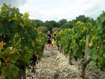 This Full Marathon Has 23 Wine Tastings Along The Race Route