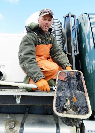 COVID-19 outbreak impacts trout stocking schedule