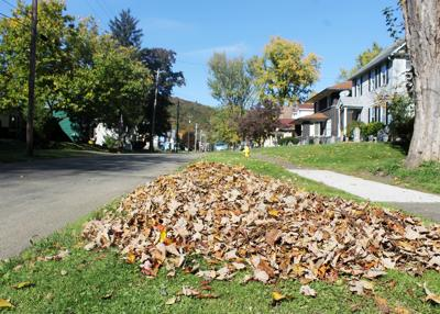 Salamanca DPW prepping for annual leaf pick-up weeks