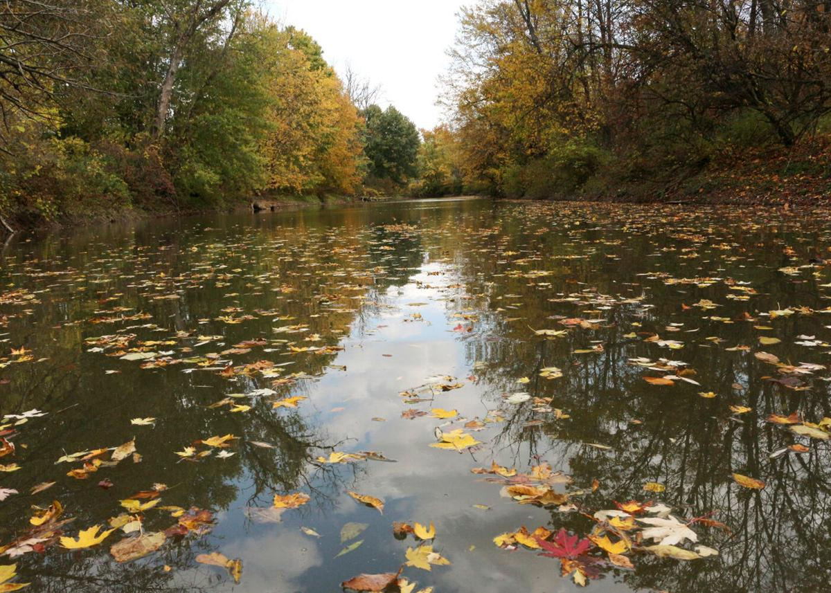 The Dredge, Conewango Creek are colorful fall paddles
