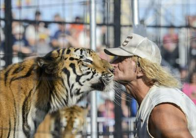 Brunon's Tigers make a roaring performance at fair