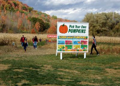 Pumpkinville requiring passes this weekend due to COVID