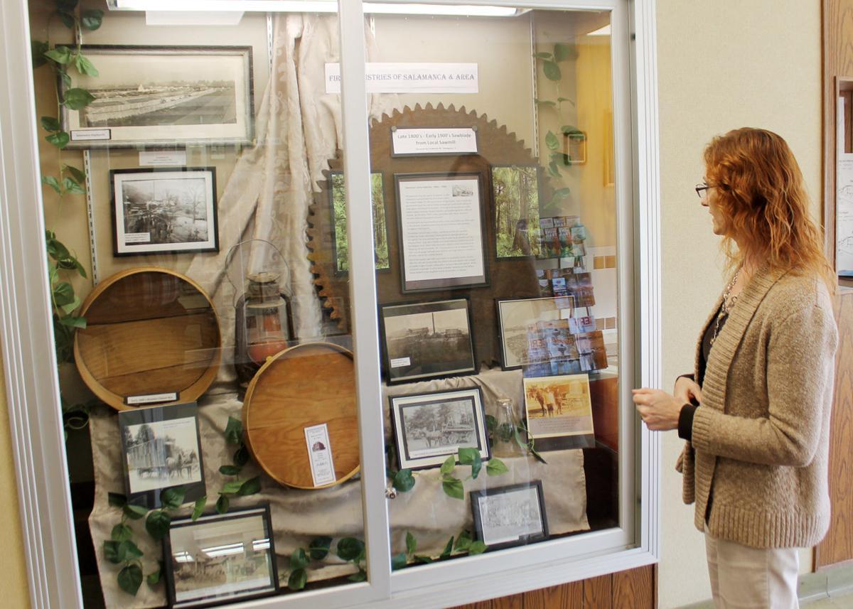Two Salamanca museum exhibits on display at municipal building 2