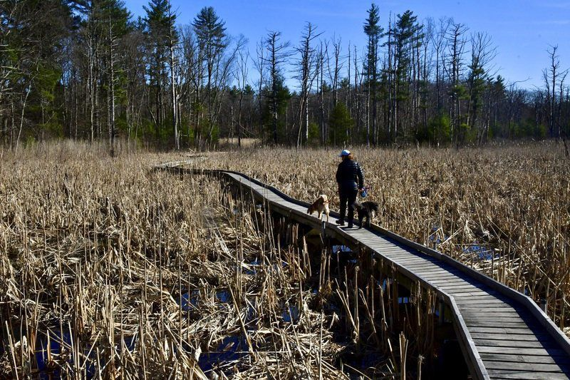 The great outdoors: Many turning to nature as a retreat in uncertain times