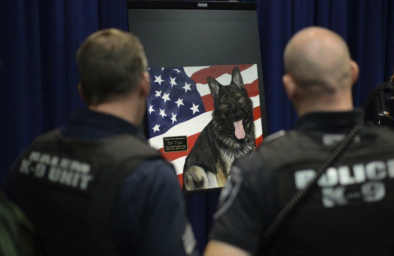 Thor, Salem police dog, memorialized in painting