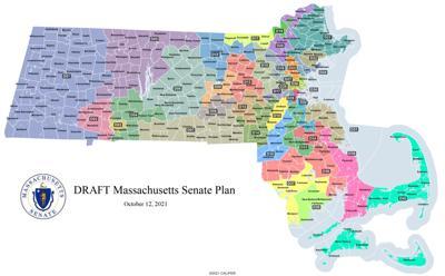 Draft Senate redistricting map