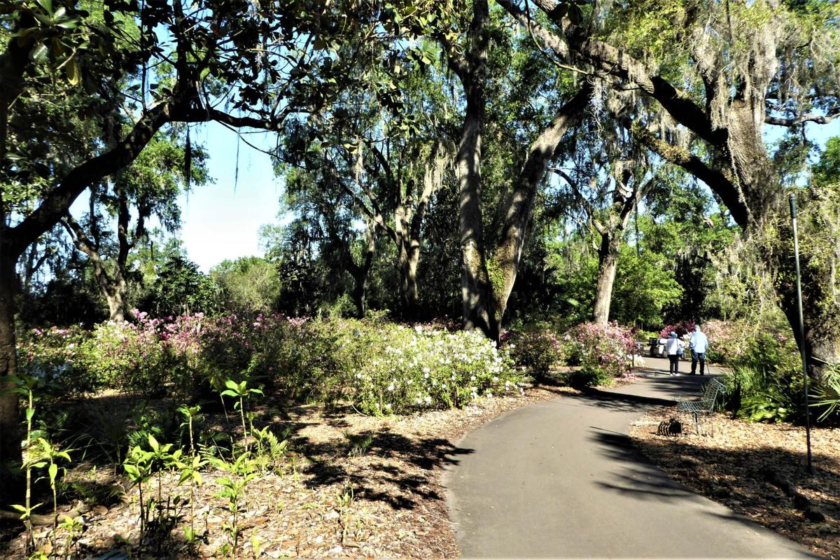 Classic Florida attractions continue to welcome tourists   Don\'t ...