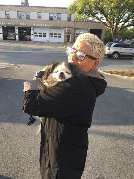 Poochmissingsince gas disaster returned to owner a year later
