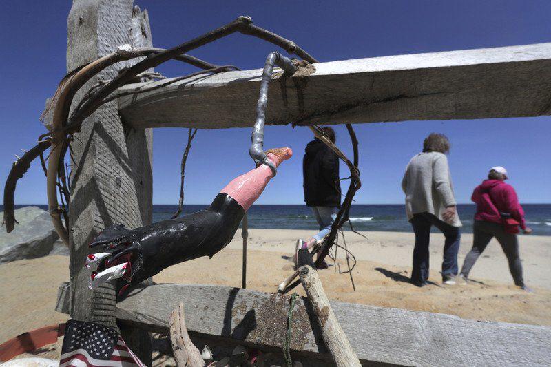 New studyeyes Cape Cod feeding habits of great whites