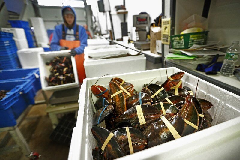 Lobster biz braces for Chinese New Year impacted by pandemic