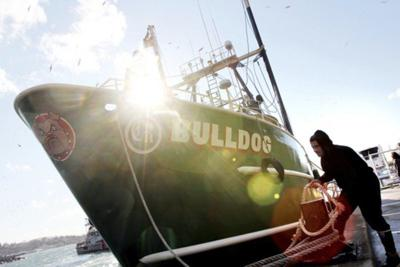 'Codfather' captain fined for illegal nets