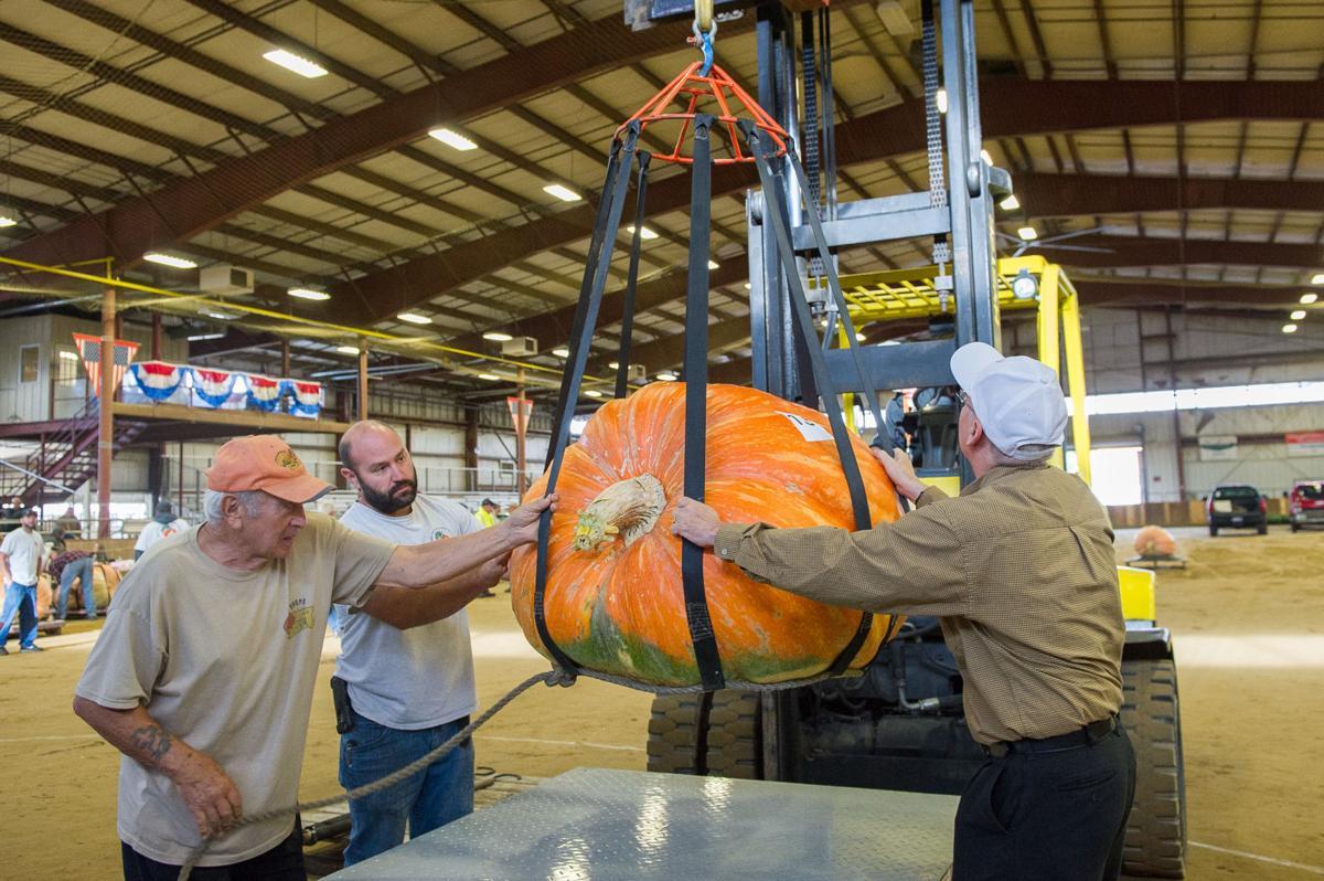 Slideshow Giant Pumpkin Weigh Off Topsfield Fair Gallery