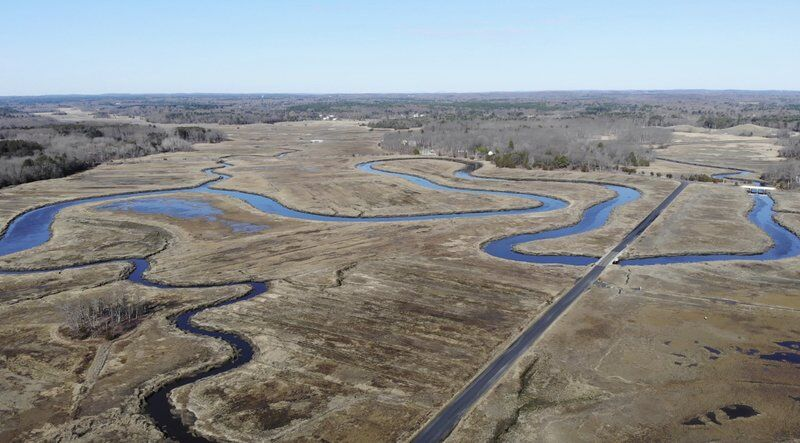 Salt marsh restoration project gets $1M boost