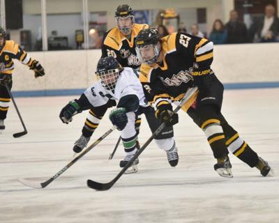 Mike Gallant -- Bishop Fenwick hockey