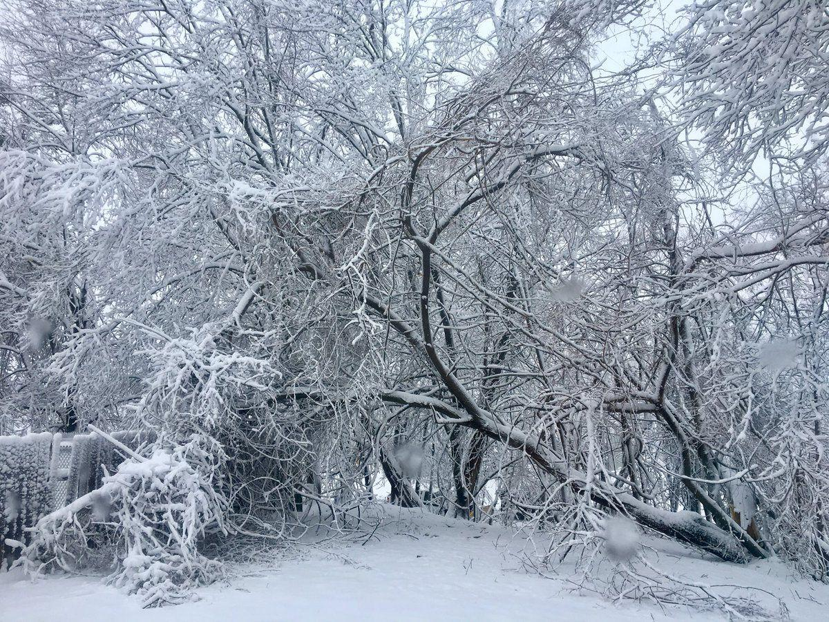 Live Blog Much Of Topsfield Boxford Still Without Power News Salemnews Com
