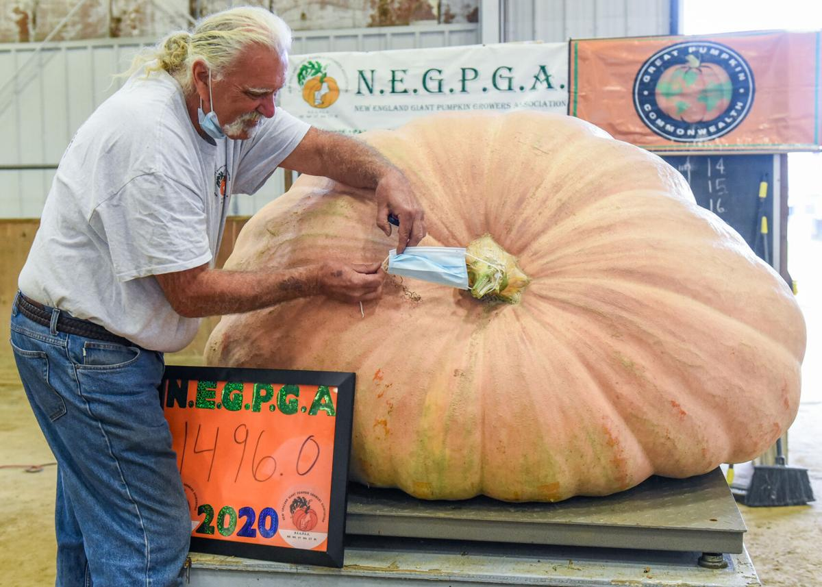 The New England Giant Pumpkin Weigh-Off