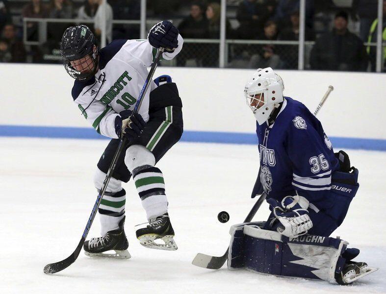 Endicott alums to play pro hockey in Huntsville