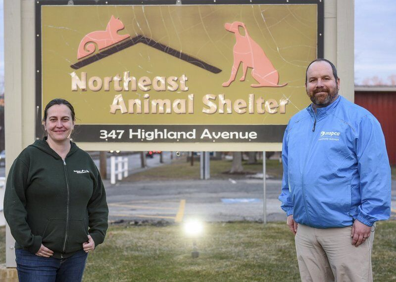 Northeast Animal Shelter merges with MSPCA
