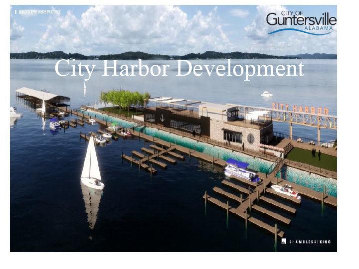 Guntersville Harbor Development