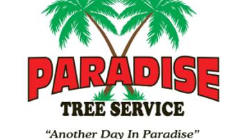 Paradise Tree Service Tree Maintenance Tree Trimming Shaping