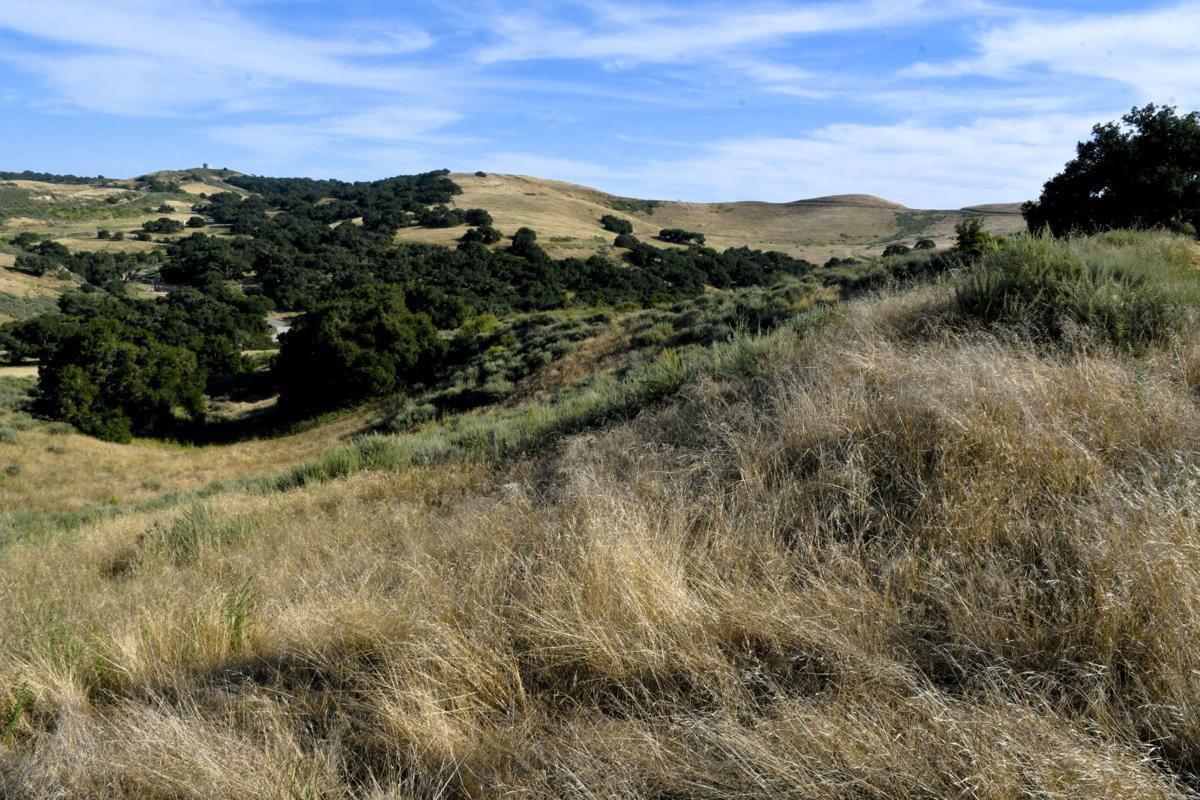 060919 Los Flores Ranch Park 02.jpg