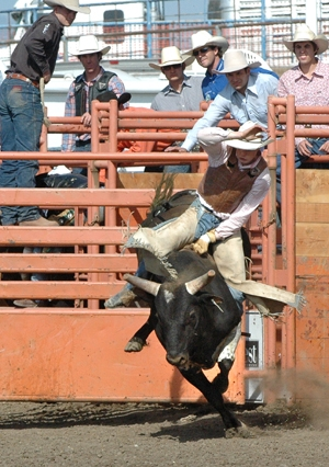 The Last Go-Round: Final day of action at 64th annual Elks Rodeo sees champs crowned in 11 groups