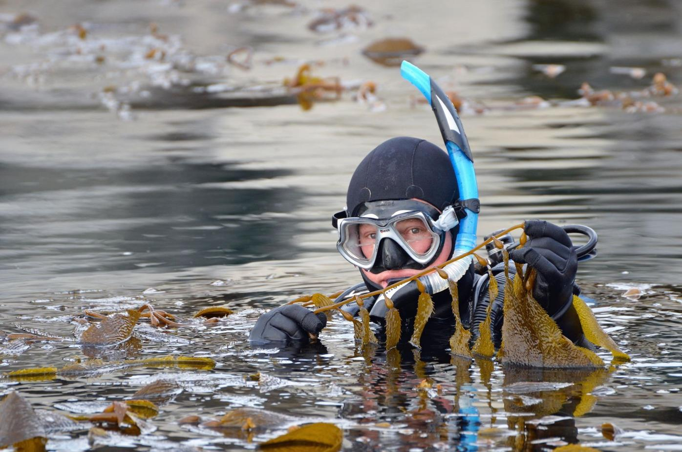 Jim Kelly kelp.jpg