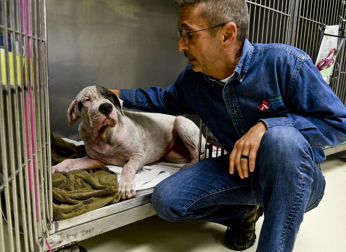092719 Humane Society anniversary 02.jpg