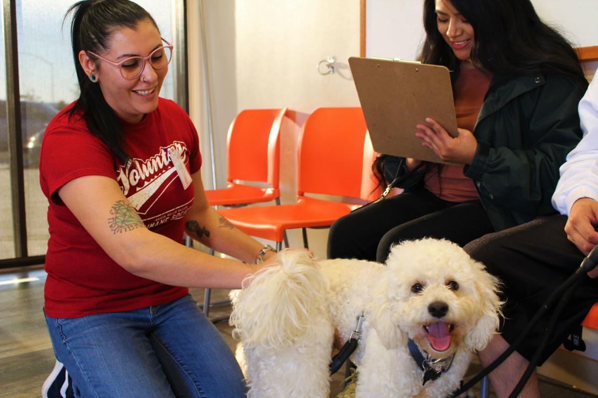 Santa Maria Valley Humane Society adoption