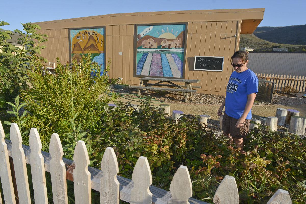 Lompoc educator hoping to catch school garden vandals | Local News ...
