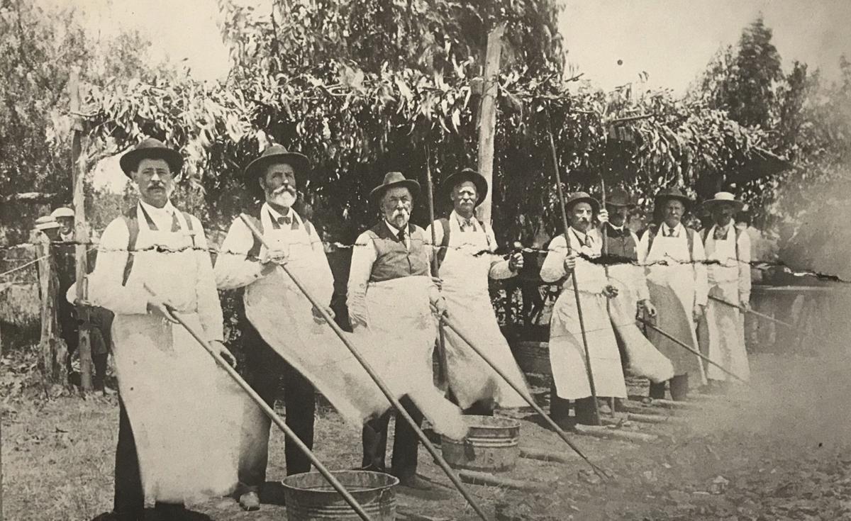 1906 Buena Vista Park.jpg