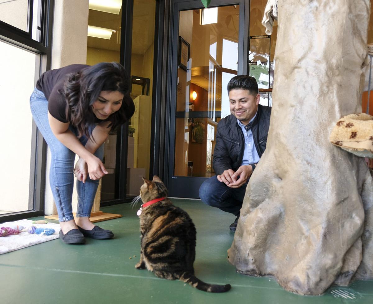 030618 Humane Society volunteers 01.jpg