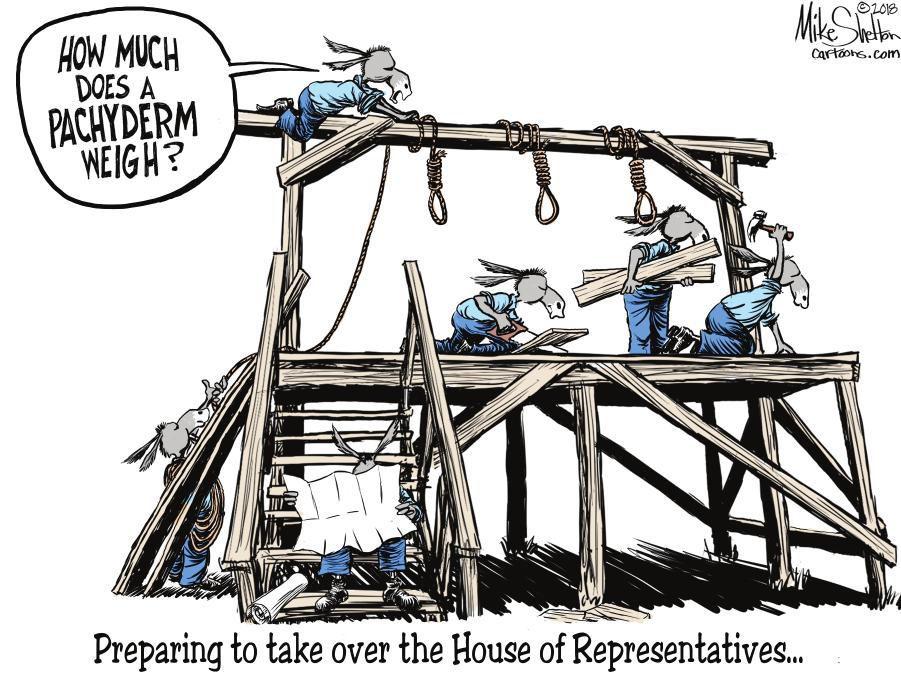 Cartoon: Democrats prepare