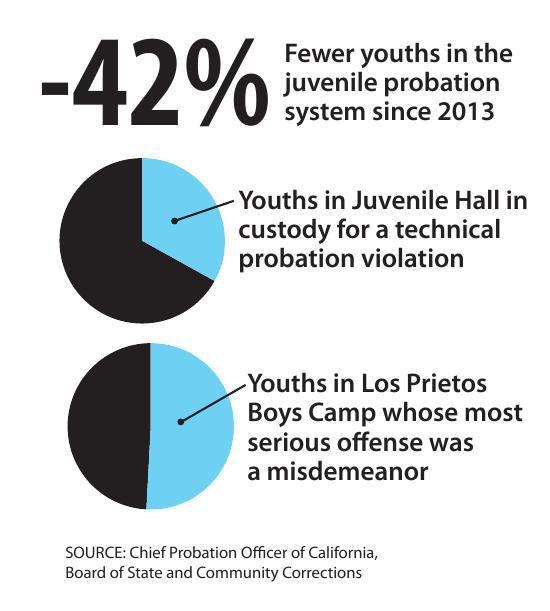 Juvenile numbers.pdf