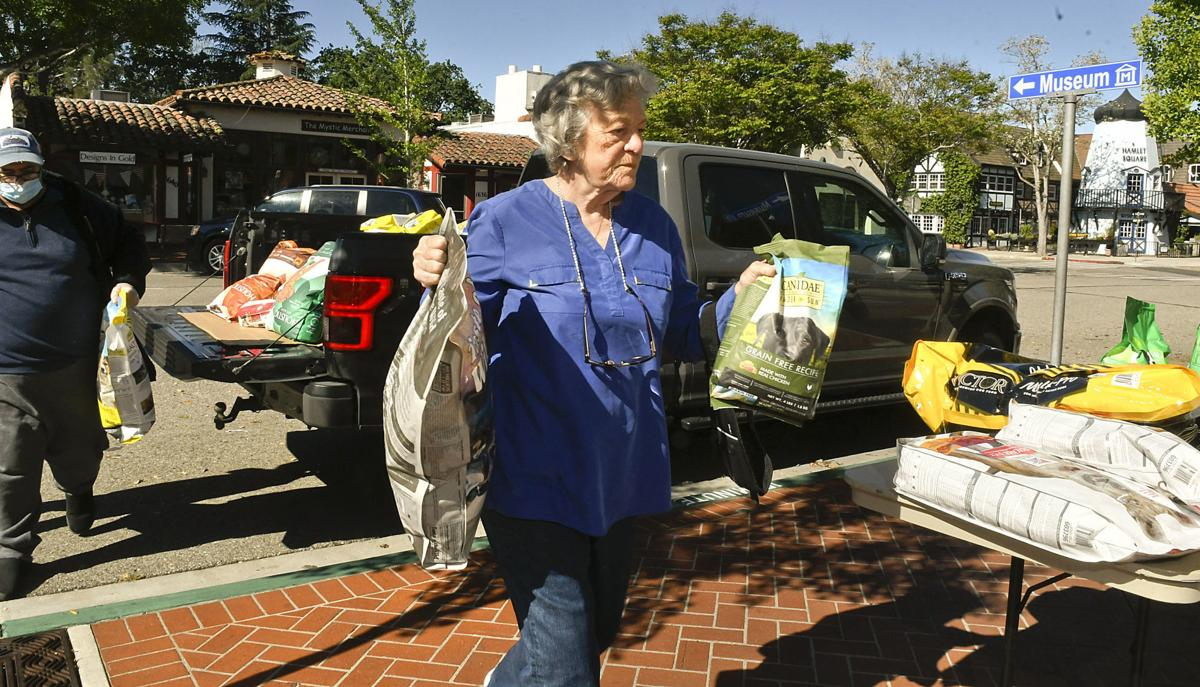 Puppy love: Dogs won't go hungry if 85-year-old Solvang resident can help it