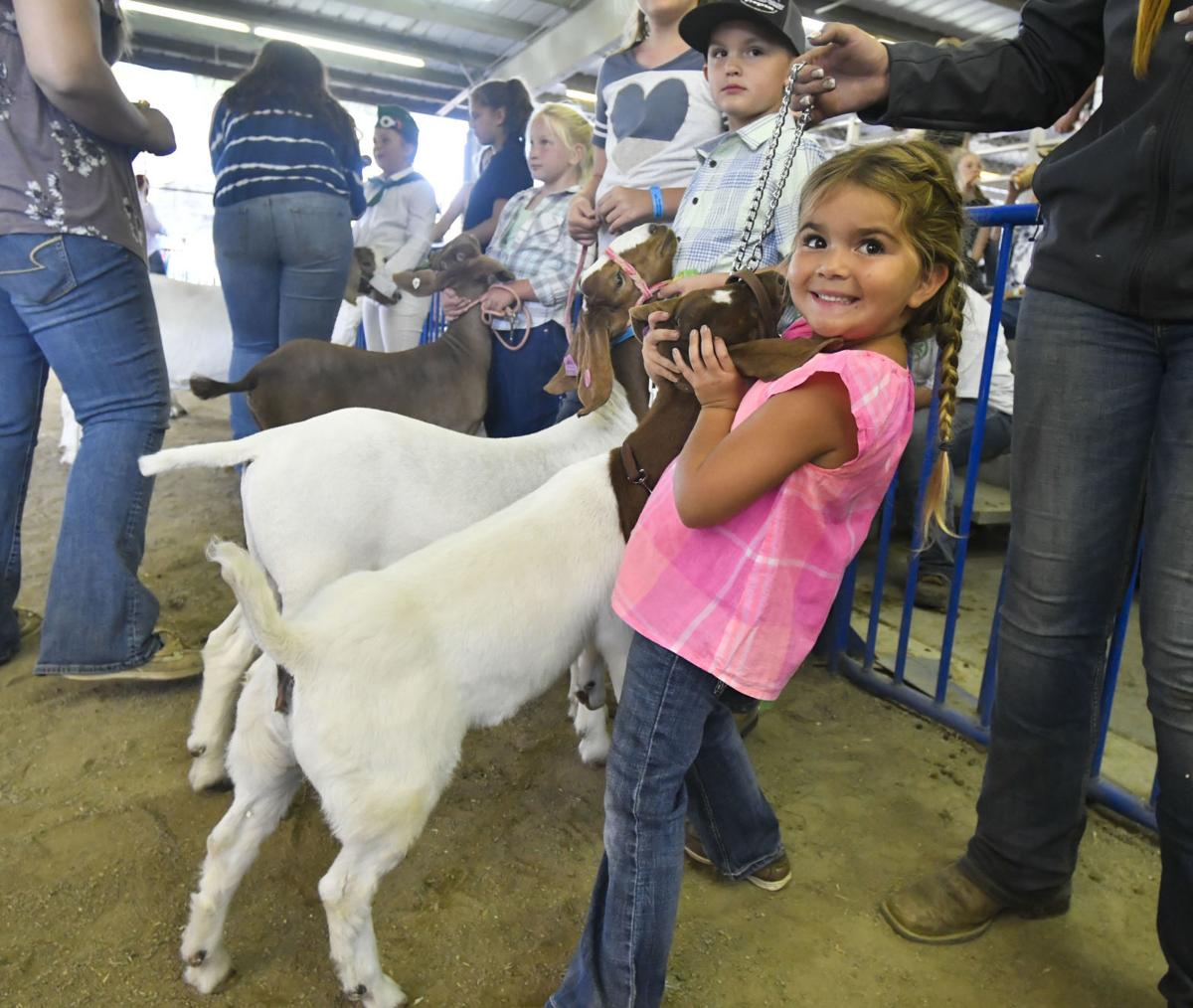 071118 County Fair Pee Wee 01.jpg