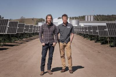 Firestone Walker Solar Array