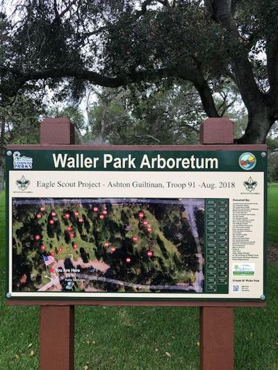 101218 Arboretum 2.jpg