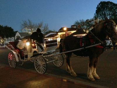 021320 Love Carriage Rides Solvang