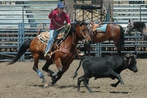 Revving up for Elks annual rodeo: Roped-in from the start
