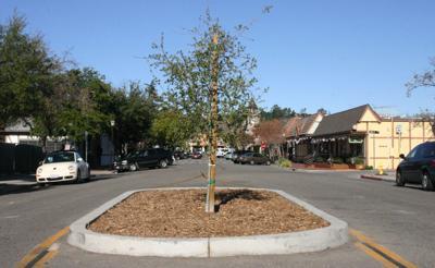 New First Street oak to get art