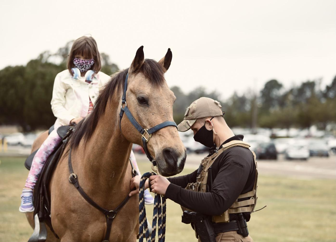 30th Security Forces Squadron Military Working Horse Unit