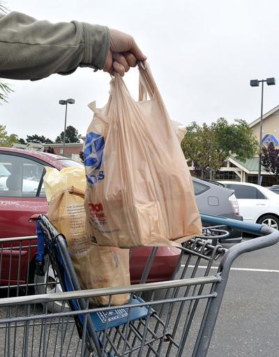 031816 Plastic bag ban 02.jpg (copy)