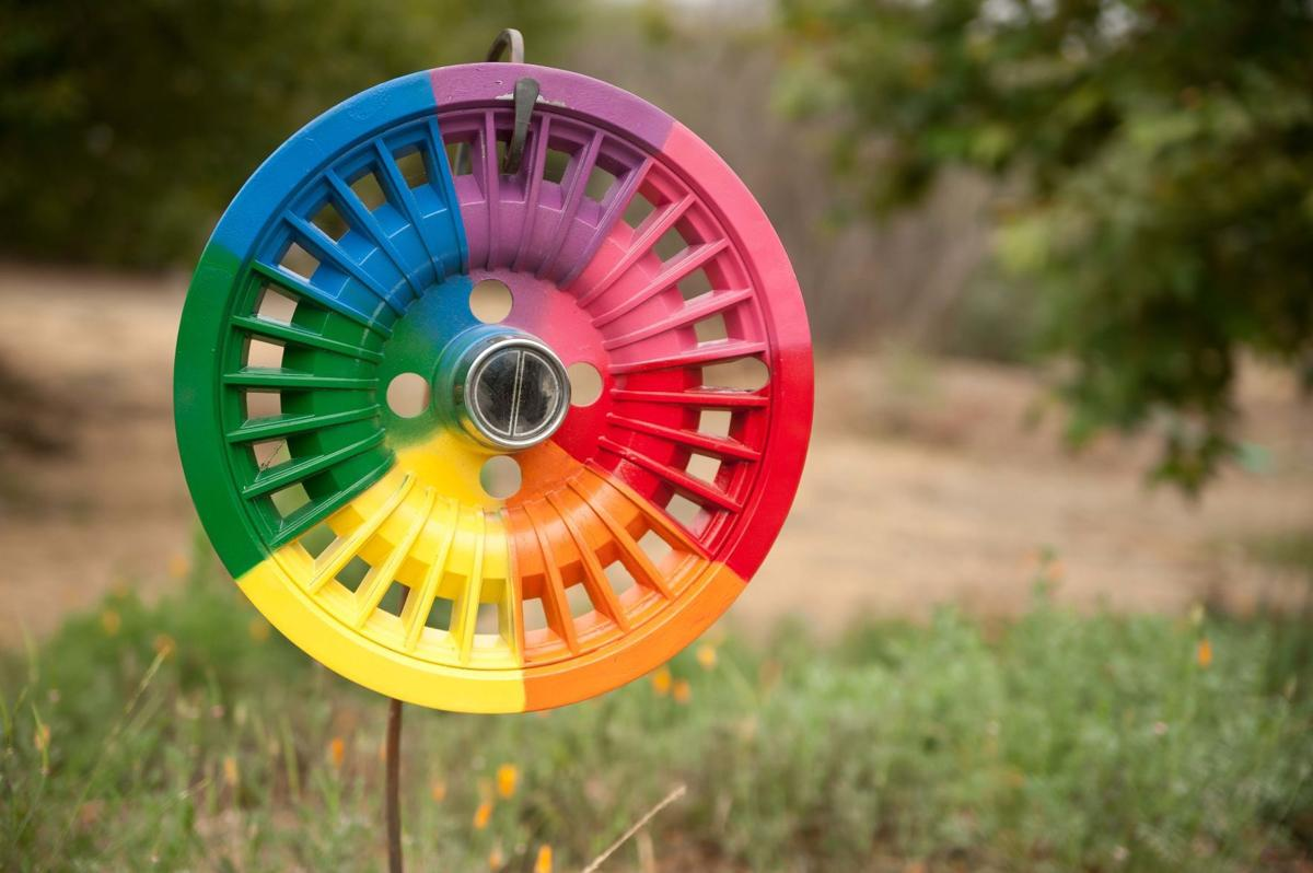 071620 Wildling Museum hubcap project