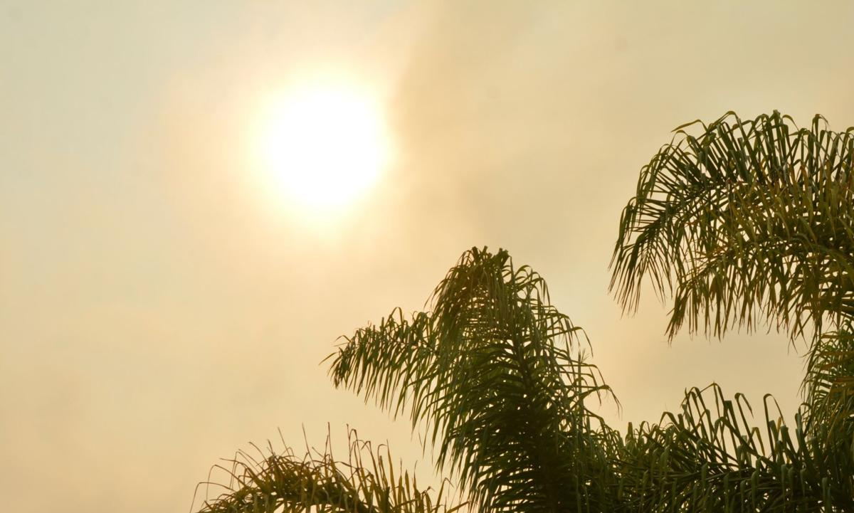 090820-smt-photo-sun-shade.JPG