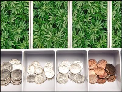 Cannabis is cash